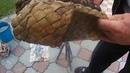 коолодка из ивовой коры для плетения лаптей
