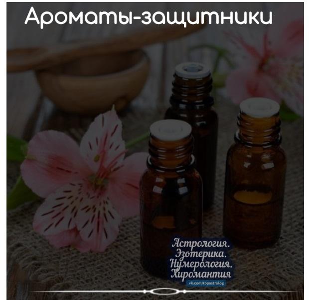 https://pp.userapi.com/c846017/v846017175/150d0e/waa8RnN4Rq8.jpg