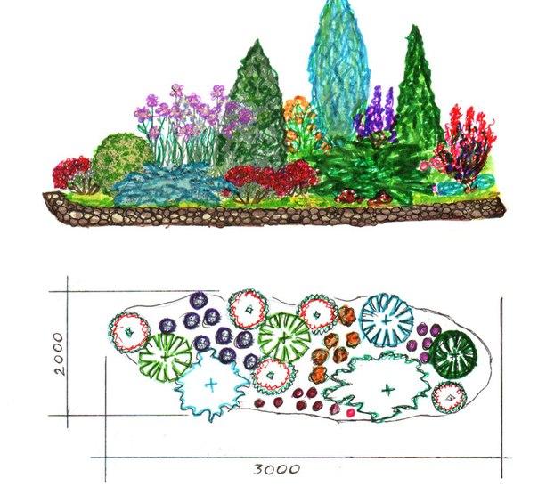 рисунков и схем цветников