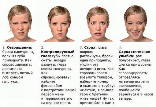 Лицо каждой женщины состоит из сорока