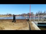 Что сейчас происходит на обводном канале в Нерехте. Прямая трансляция