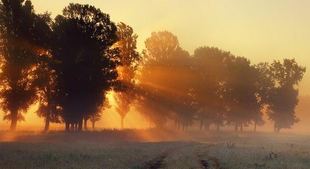 «Первые лучи солнца». Автор фото: Виктор Тулбанов.