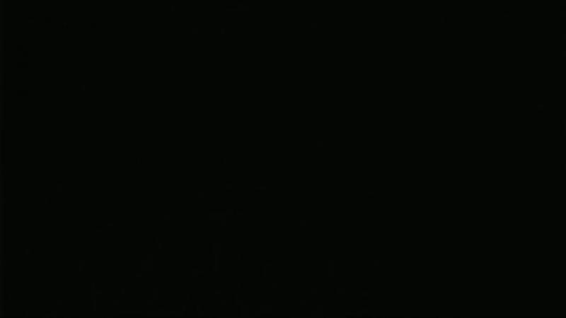 Зверства бульбоментов в Бресте.