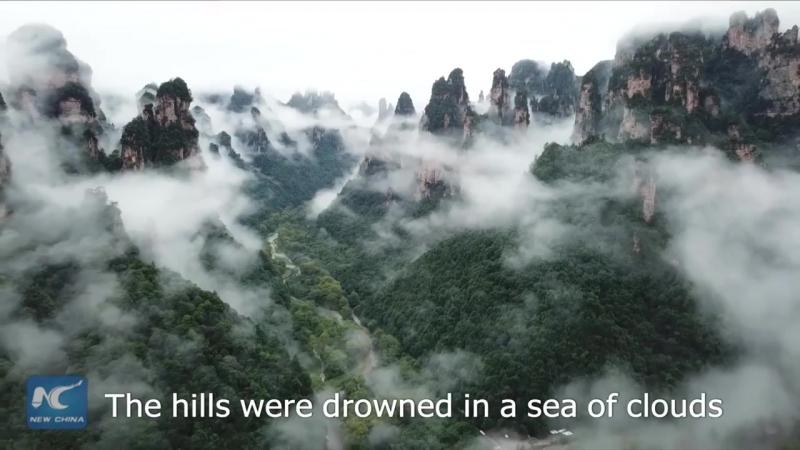 Туман укрыл скалы и леса из «Аватара»