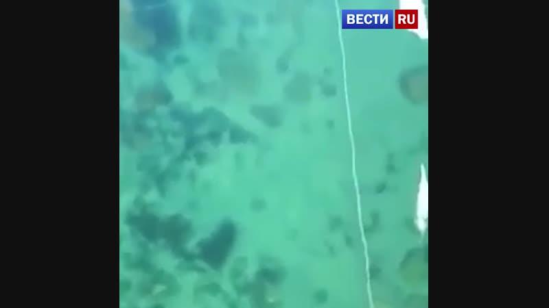 На Байкале уже можно полюбоваться подводным миром через прозрачный лёд. Кристальная чистота!