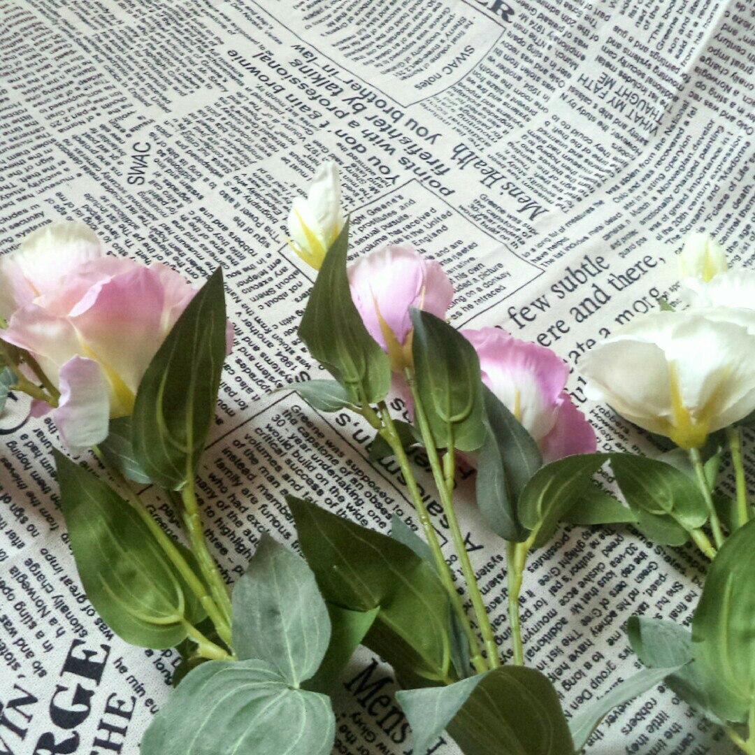 Обзор на цветы из магазина Homonic