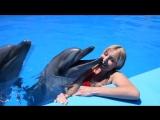 Плавание с дельфинами в главном бассейне (Под открытым небом)