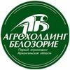 Радостино Белозорие Кнежица Куртяевская