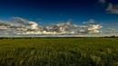 Летние грозы Забайкалья и бескрайнее море зелени