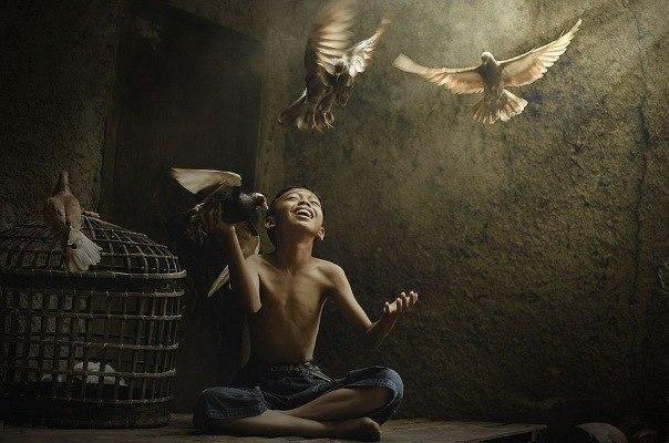 Если вы поймали птицу, то не держите ее в клетке, не делайте так, чтобы она захотела улететь от вас, но не могла. А сделайте так, чтобы она могла улететь, но не захотела.   © Ошо