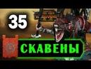 Скавены прохождение Total War Warhammer 2 за Квика 35