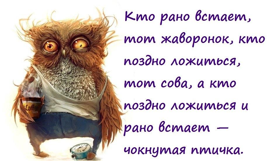 http://cs309225.vk.me/v309225908/56c9/RqJj1OI5vnM.jpg