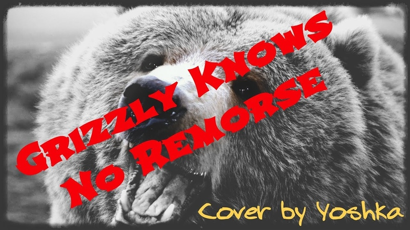 Grizzly Knows No Remorse Ненадолго но здесь guitar cover