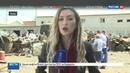 Новости на Россия 24 • Дым столбом и огонь: на месте взрыва нашли части ракет от С-200