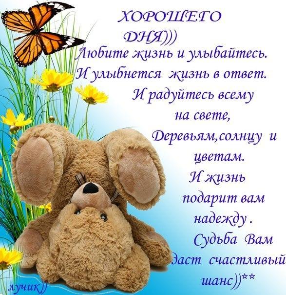 http://cs425323.vk.me/v425323375/5d1/bN77SG1ObW8.jpg
