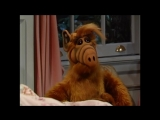 Alf Quote Season 2 Episode 6_Змея