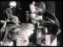 Владислав Старевич Сборник N2 мультфильмы cartoon мультики советские мультфильмы русские мульты