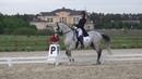Akhal-teke stallion Makka-Shael. Grand Prix. 3 place