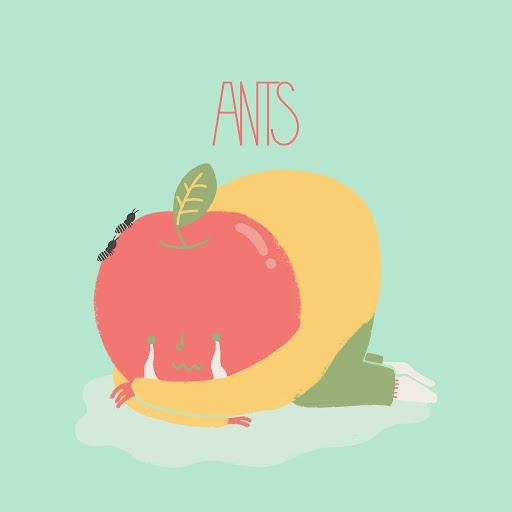 Ants альбом Sorry