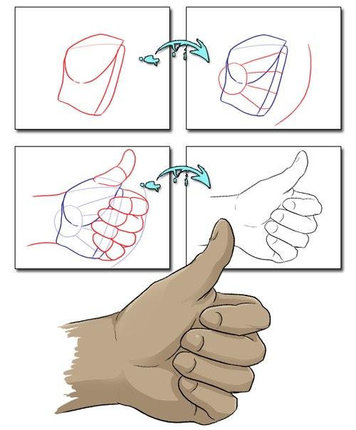 Как нарисовать пальцы поэтапно