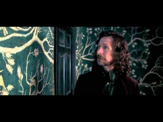 Гарри Поттер и Орден Феникса (2007 год)