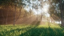 Cinema 4D Tutorial - Create Digital Nature Renders Using Octane [Part 2]