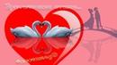 Cексстихи Стихи о сексе/секс стихи/стихи о любви/ ой как хорошо романтик