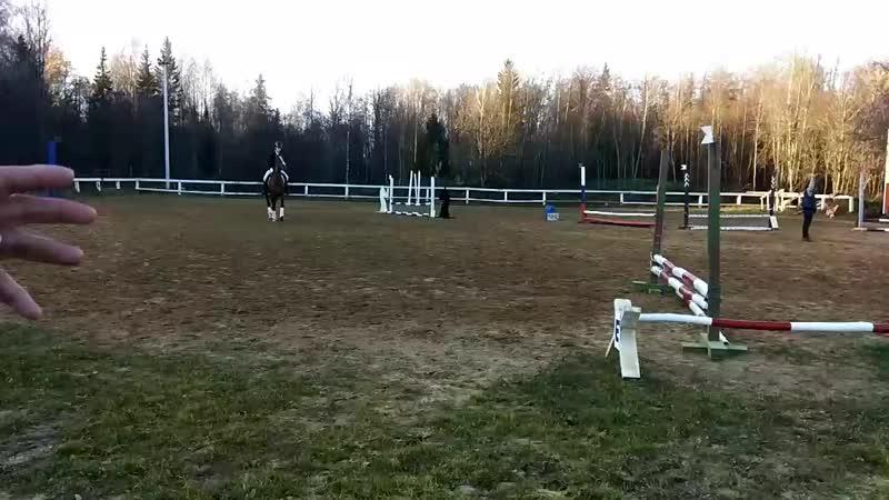 Карина Ковалева на буденновской Грозной в соревнованиях по конкуру на 40см