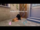ШОК ! МЕНЯ ОБМАНУЛИ В Avakin Life.Потратила на неё 11.000 @