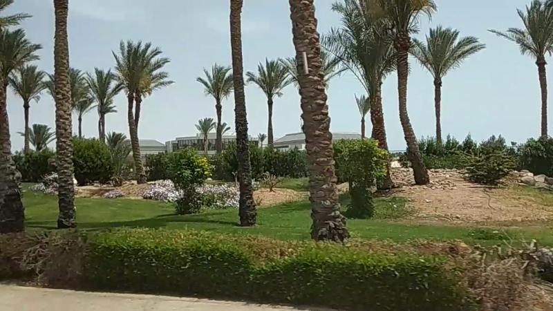 Египет 2018, Шарм-эль-Шейх.