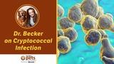 Криптококковая инфекция Cryptococcal Infection
