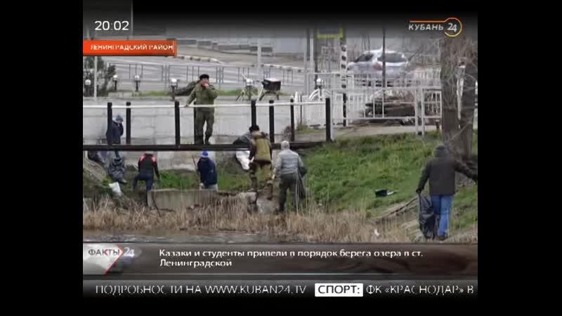 Кубань24 - Казаки и молодежь навели порядок вокруг водоема в ст. Ленинградской