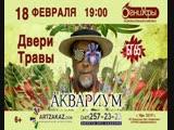 Аквариум - Двери травы, БГ 65, 18 Февраля в Уфе. Борис Гребенщиков