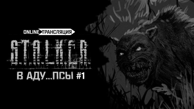 S.T.A.L.K.E.R.: В АДУ...ПСЫ 👿 Stream 1