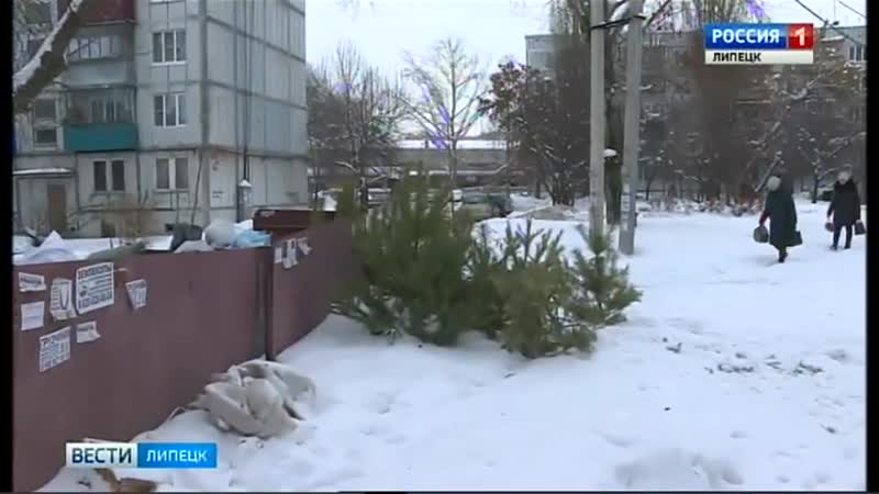 Отработавшие новогодние деревья отправятся на свалку