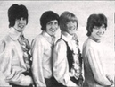 The Troop - In my opinion (Pre The Sweet 1960's featuring Brian Connolly) (Ultra Rare)