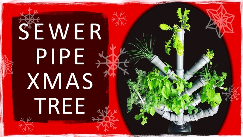 Hydroponic Greens Сhristmas Tree Made of Sewer Pipes