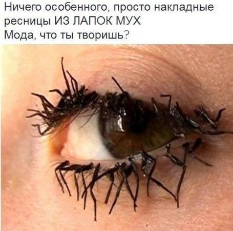 http://cs14114.vk.me/c7005/v7005808/2f8fc/bJVnjMGianQ.jpg
