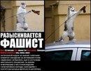 Василий Сидельников фото #24