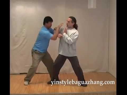 Yin Style Baguazhang Lion System Applications DVD