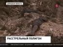 Под Донецком обнаружены новые шокирующие доказательства преступлений украинских военных