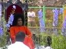 Sai Love No. 119 - Darshan in Kodaikanal