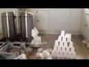 Падение пирамиды Хеопса
