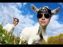 Avenged sevenfold Nightmare Goat Edition Goat Version Goat Cover AgoatX Avnged SevenGoat