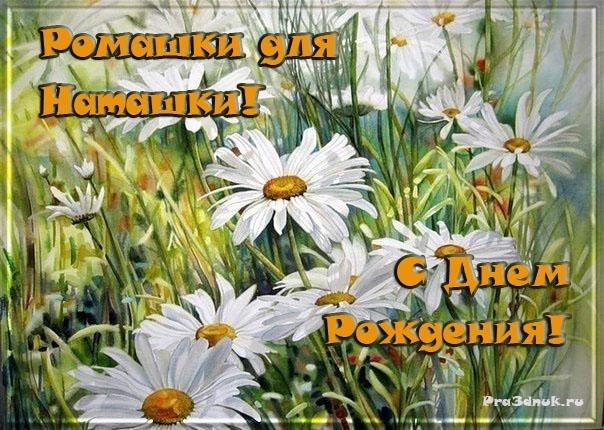 ромашки для наташки, наташка с днем рождения, наташа, поздравляю с днем рождения, день рождения, цветы на день рождения