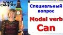 Специальный вопрос Модальный глагол Can Modal verb Can Special question