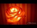 Роза-крем_брюле