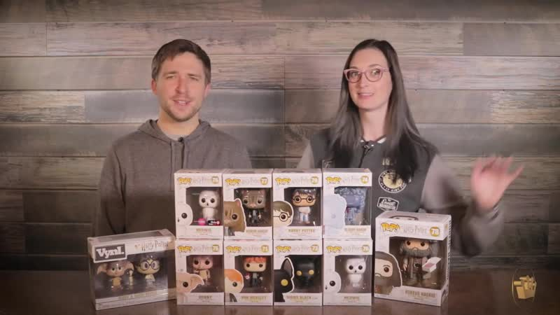 New Harry Potter Pop! and Vynl. Unboxing!