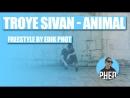 Troye Sivan Animal Freestyle by Edik Phot