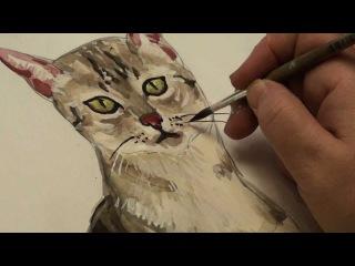 Рисуем кота - раскрашивание часть 2